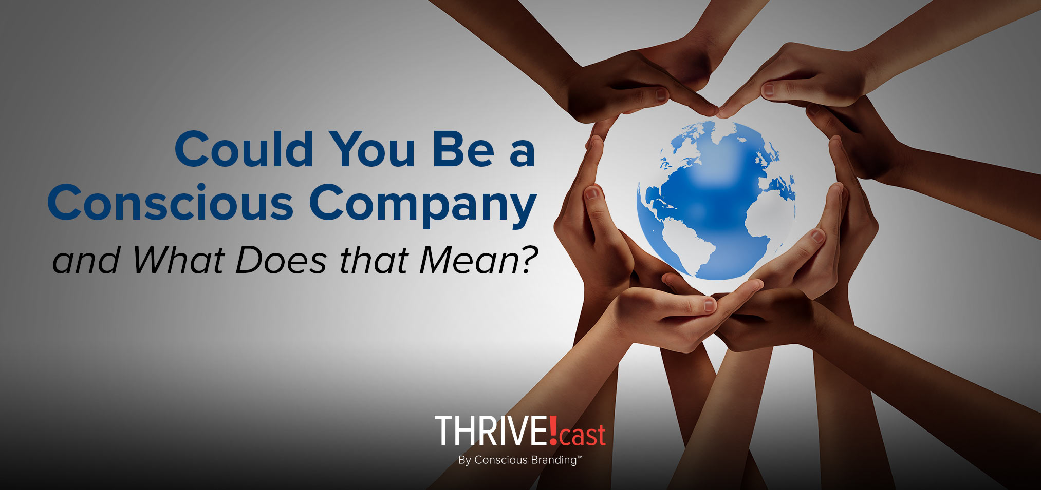 Thrive - Could You Be a Conscious Company and What Does that Mean
