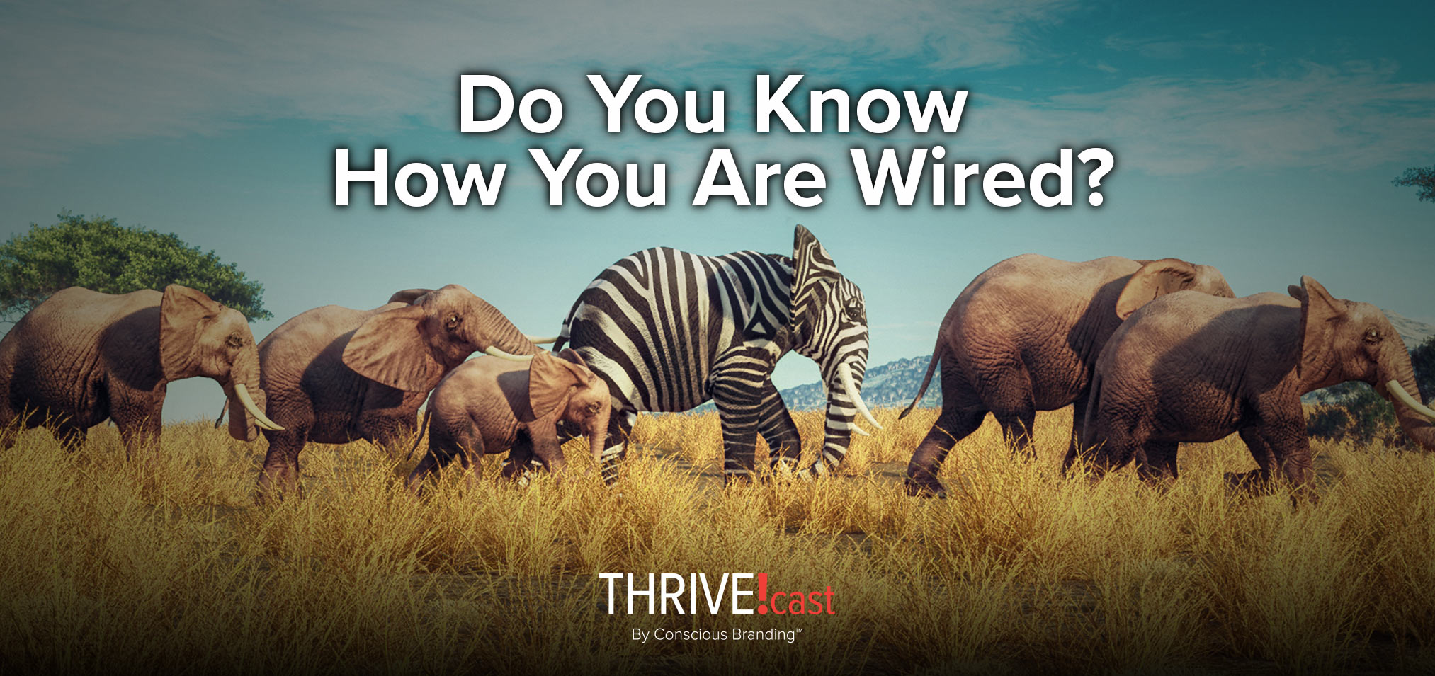 Thrivecast - Do You Know How You Are Wired