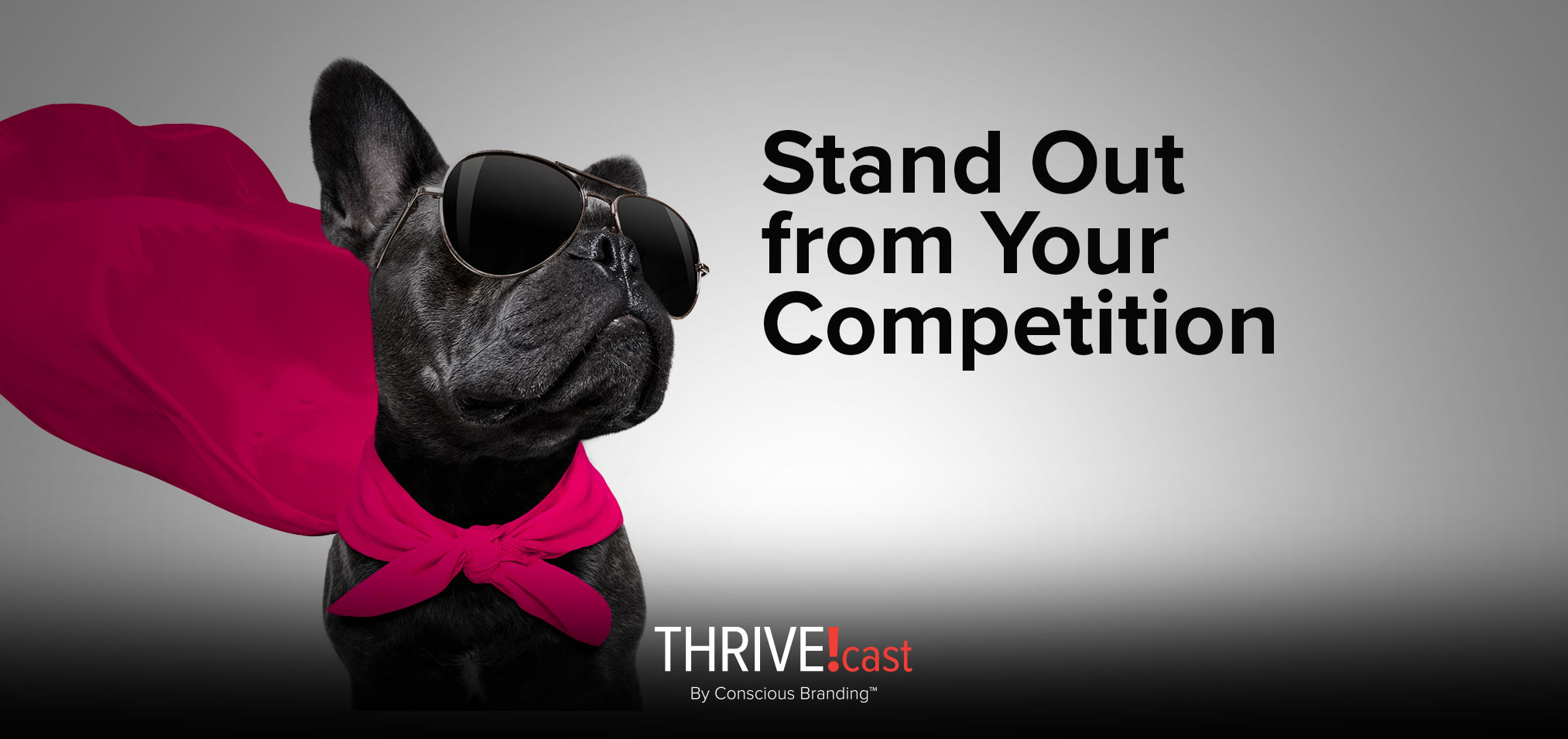 Thrivecast - Stand Out from Your Competition