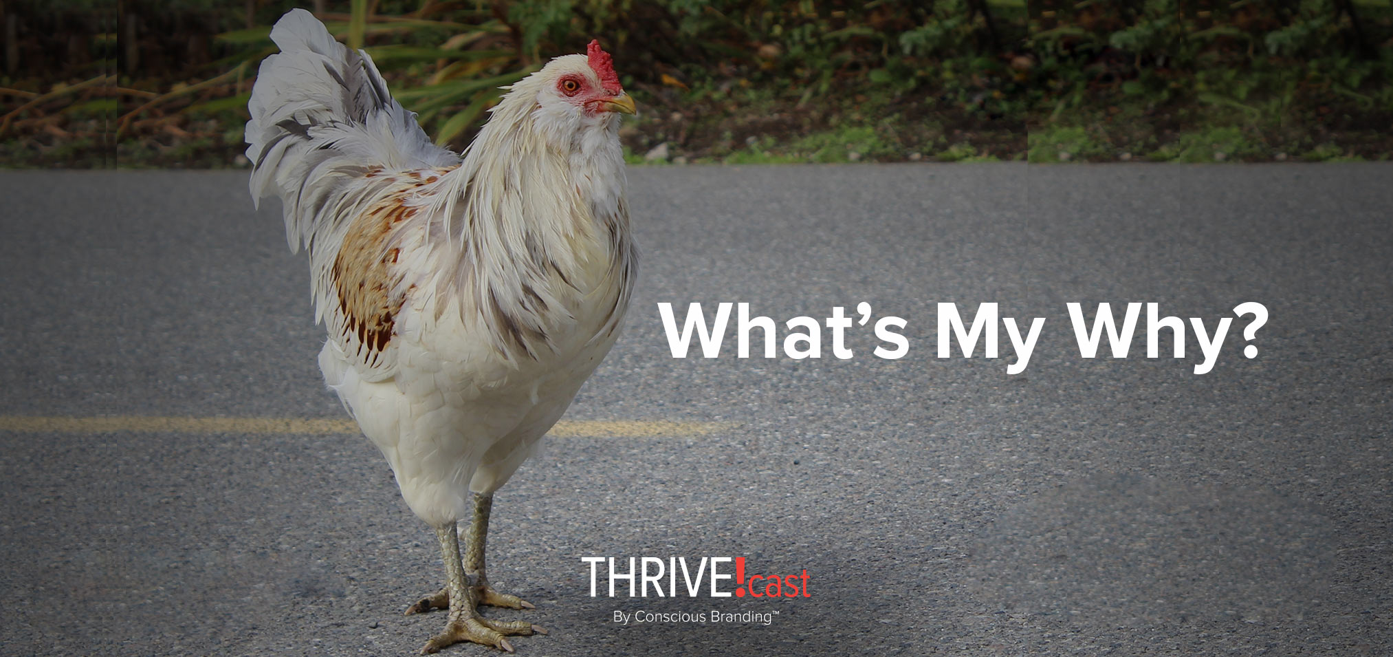 Thrivecast - Whats My Why