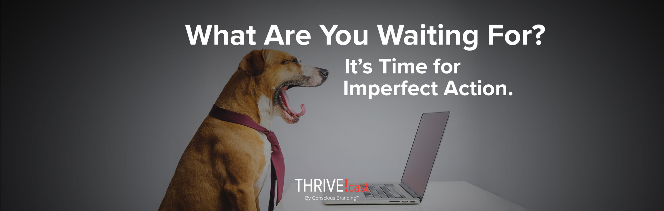Thrivecast imperfect action